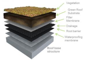 partes de la cubierta vegetal